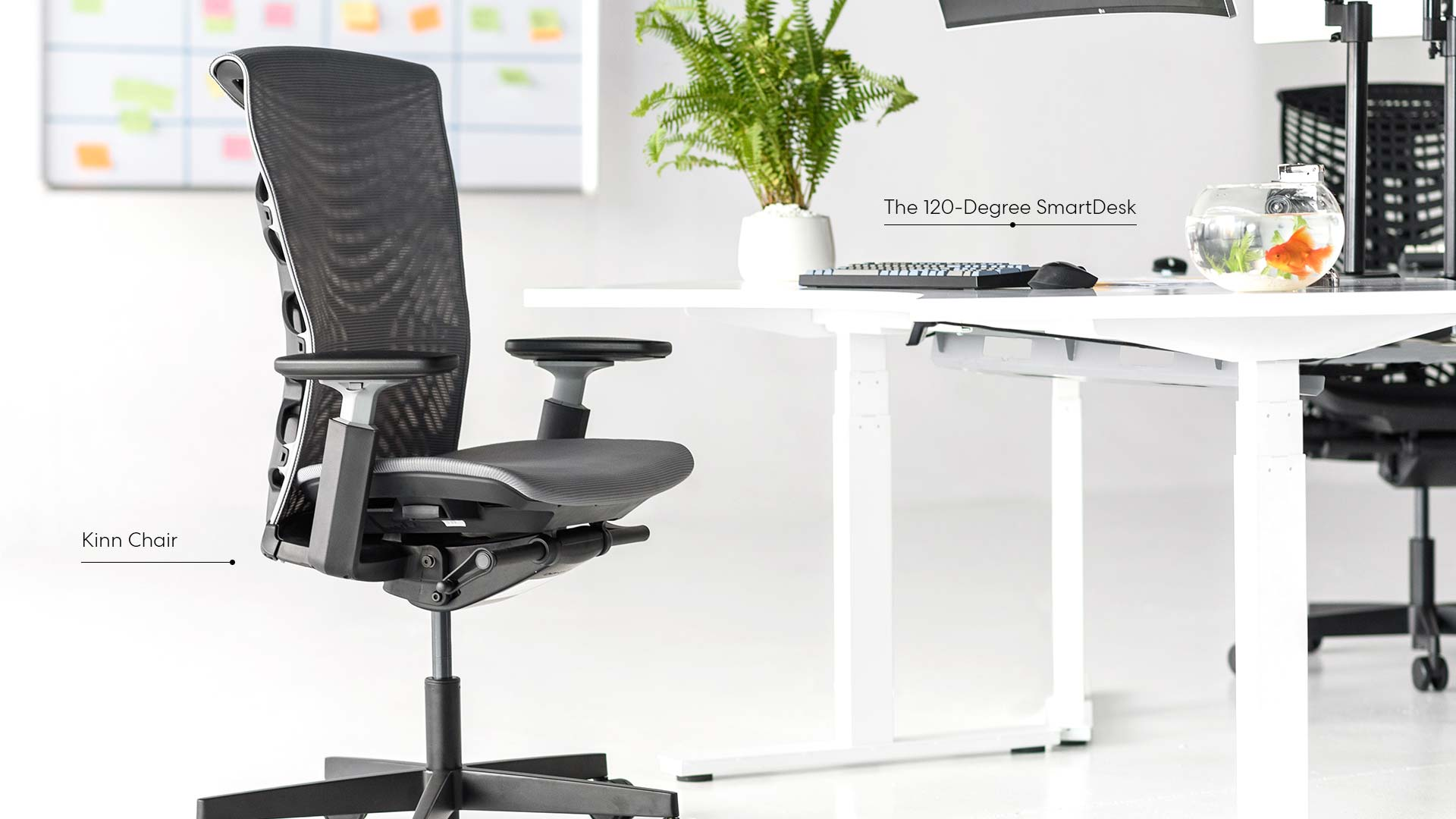 10 Reasons Why You Need Ergonomic Office Chairs 1