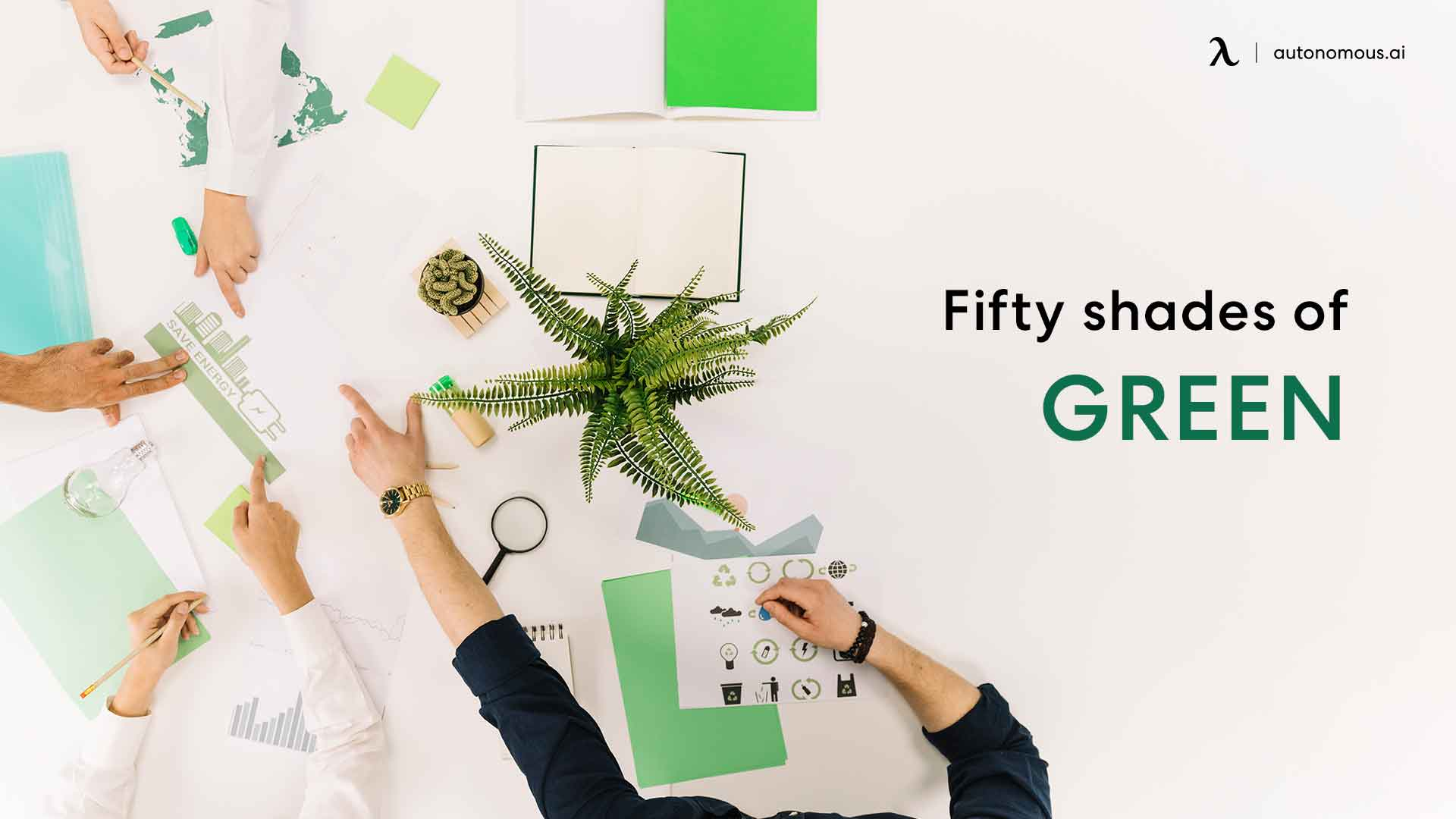 Go green in the office with Plants