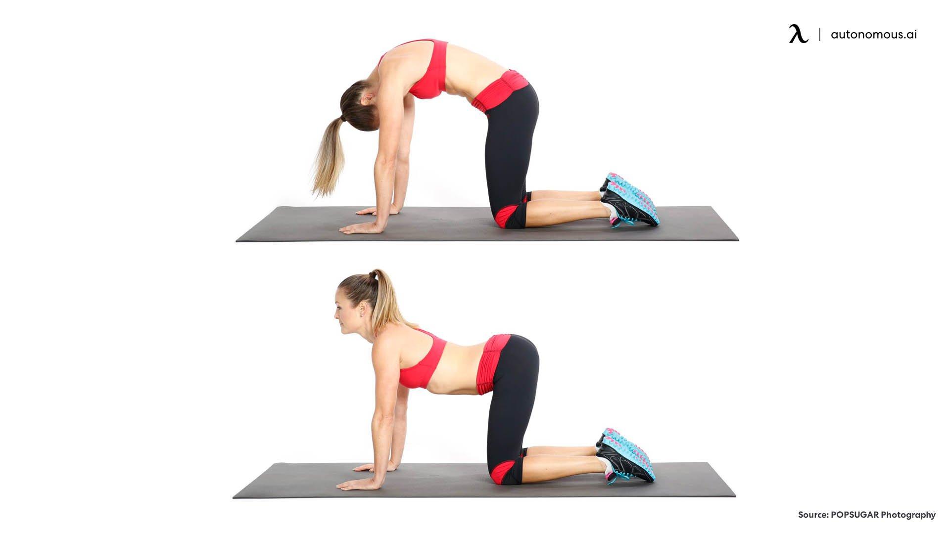 Cat-cow pose exercises