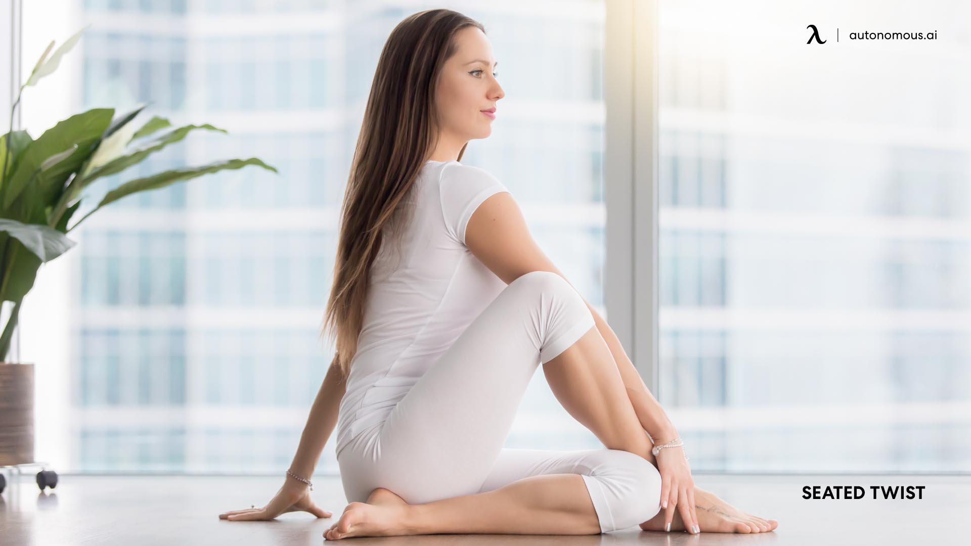 Seated Twist position