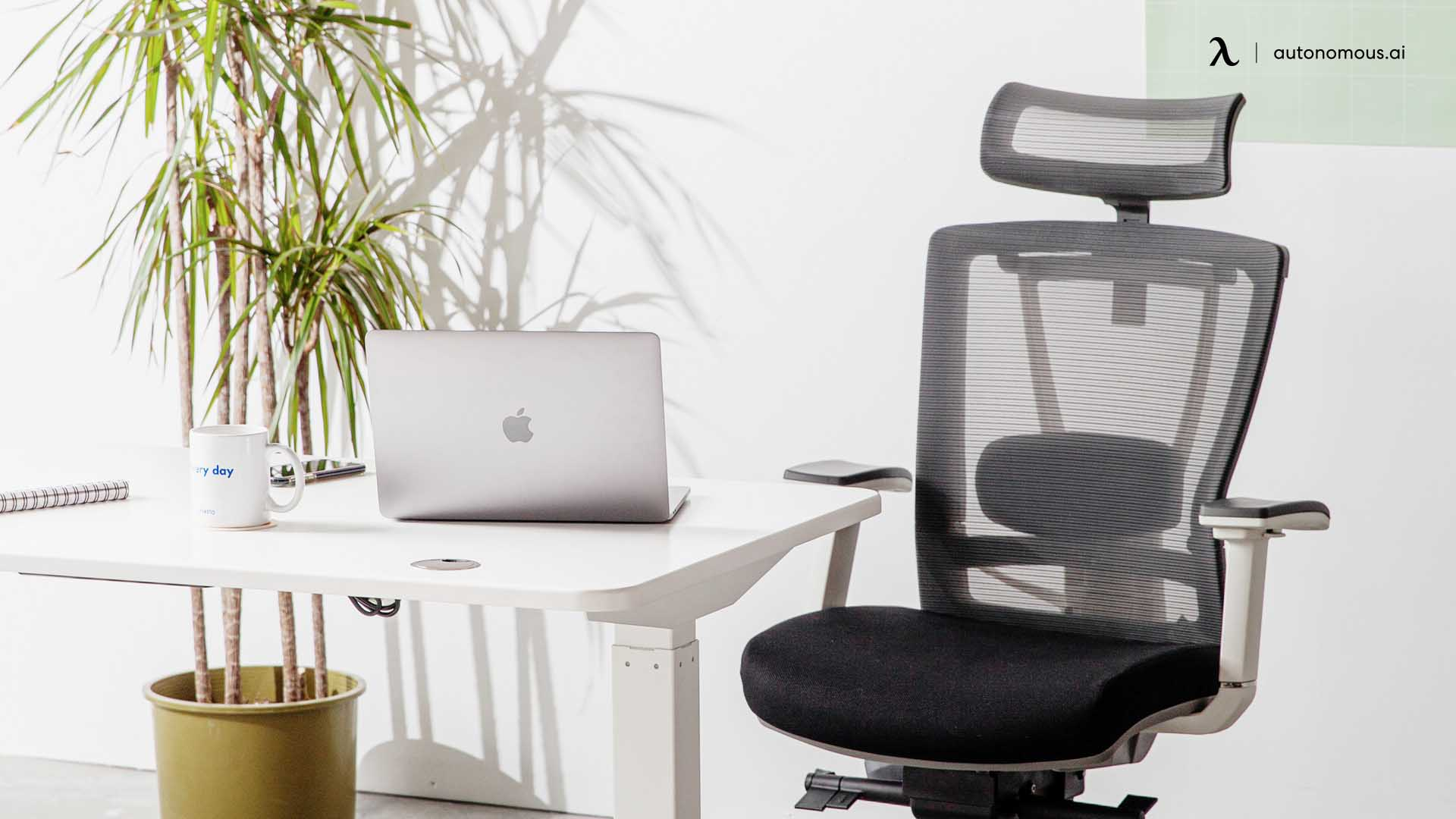 Ergonomic Desk and Chair