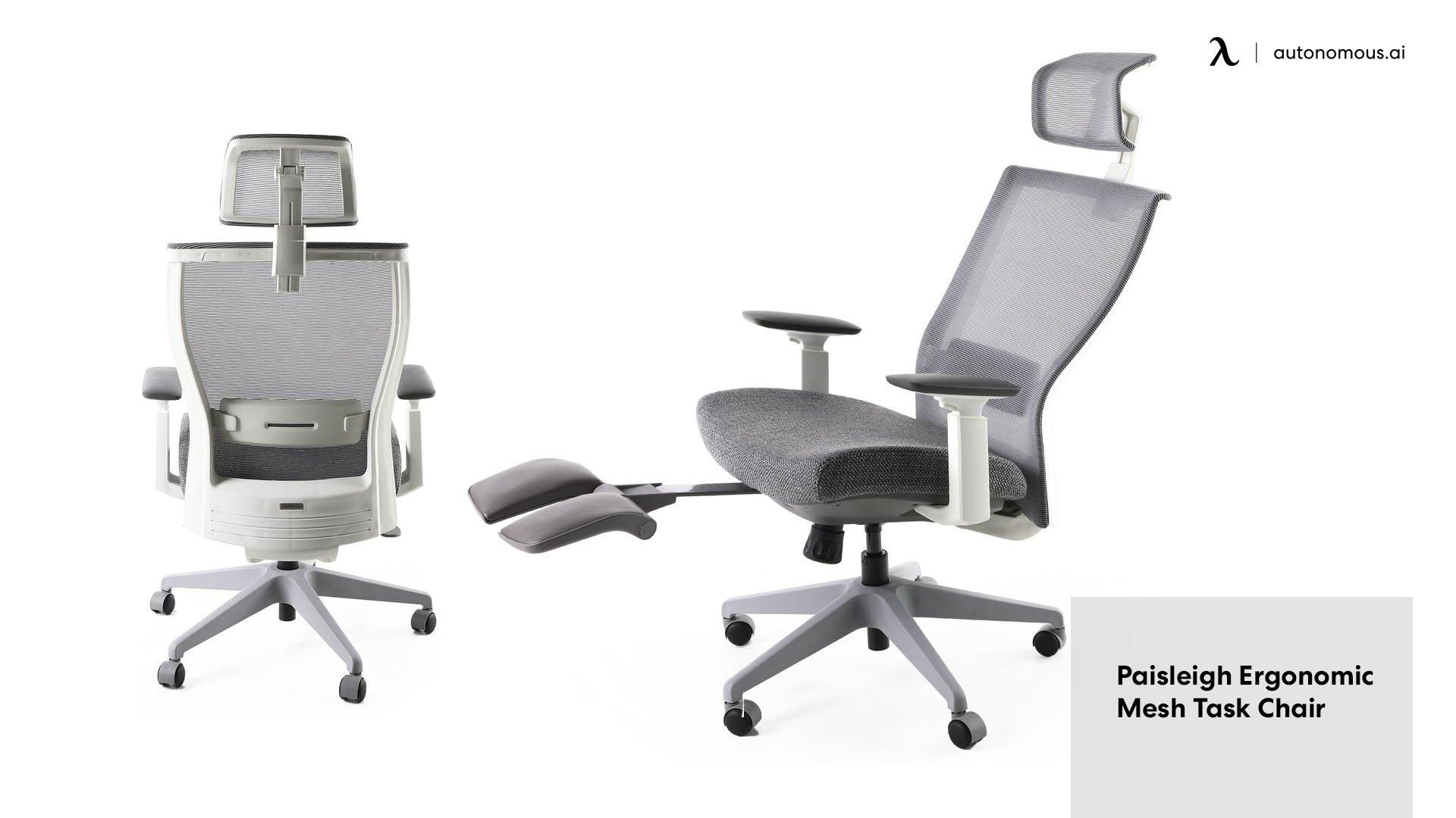 Paisleigh Ergonomic Mesh Task Chair