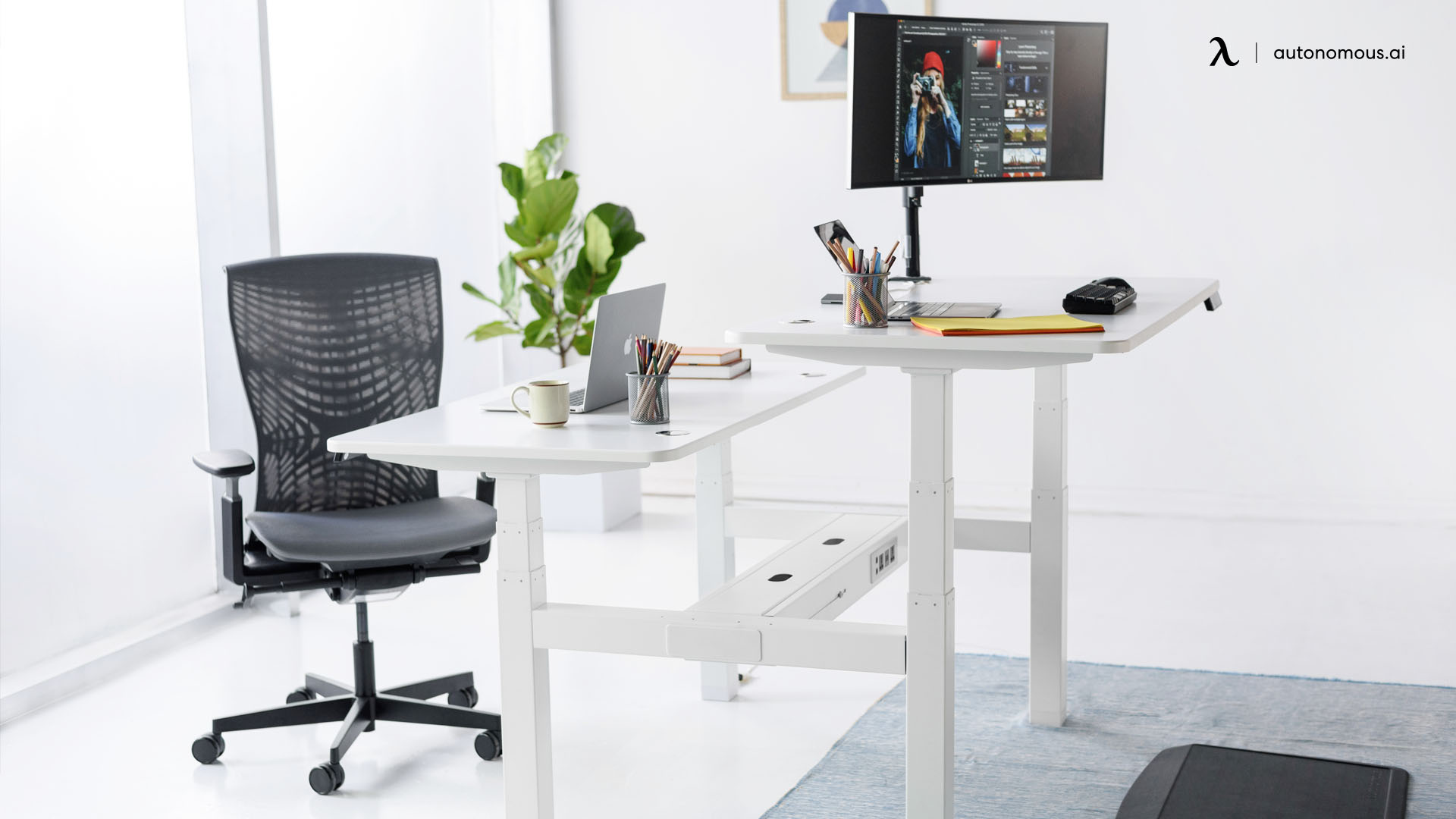 Double Desk - Standing Desk for Coworkers