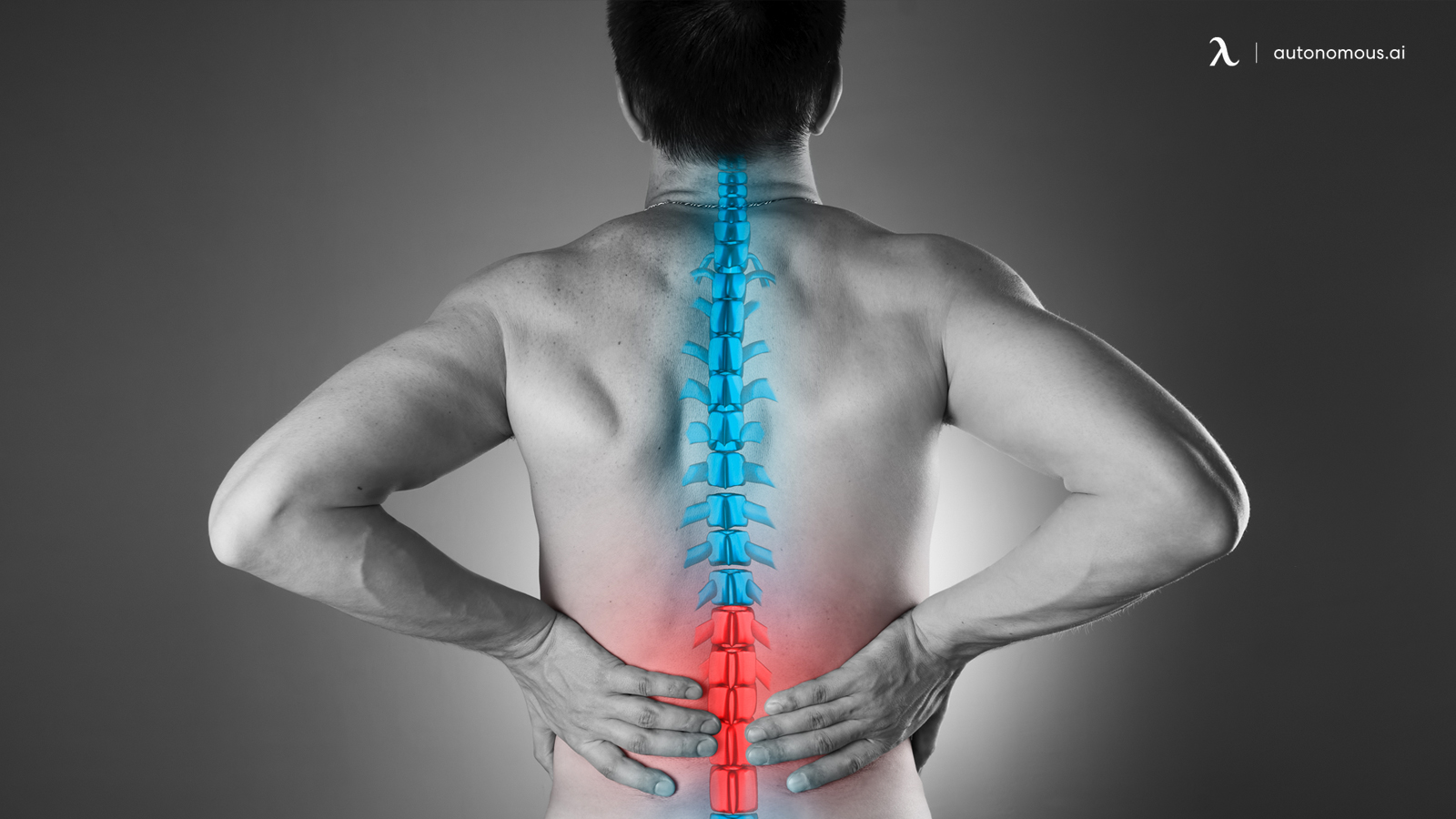 Lumbar Support and Pain