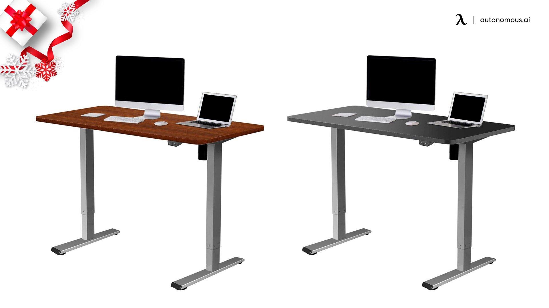 Adjustable Standing desk by Flexipot