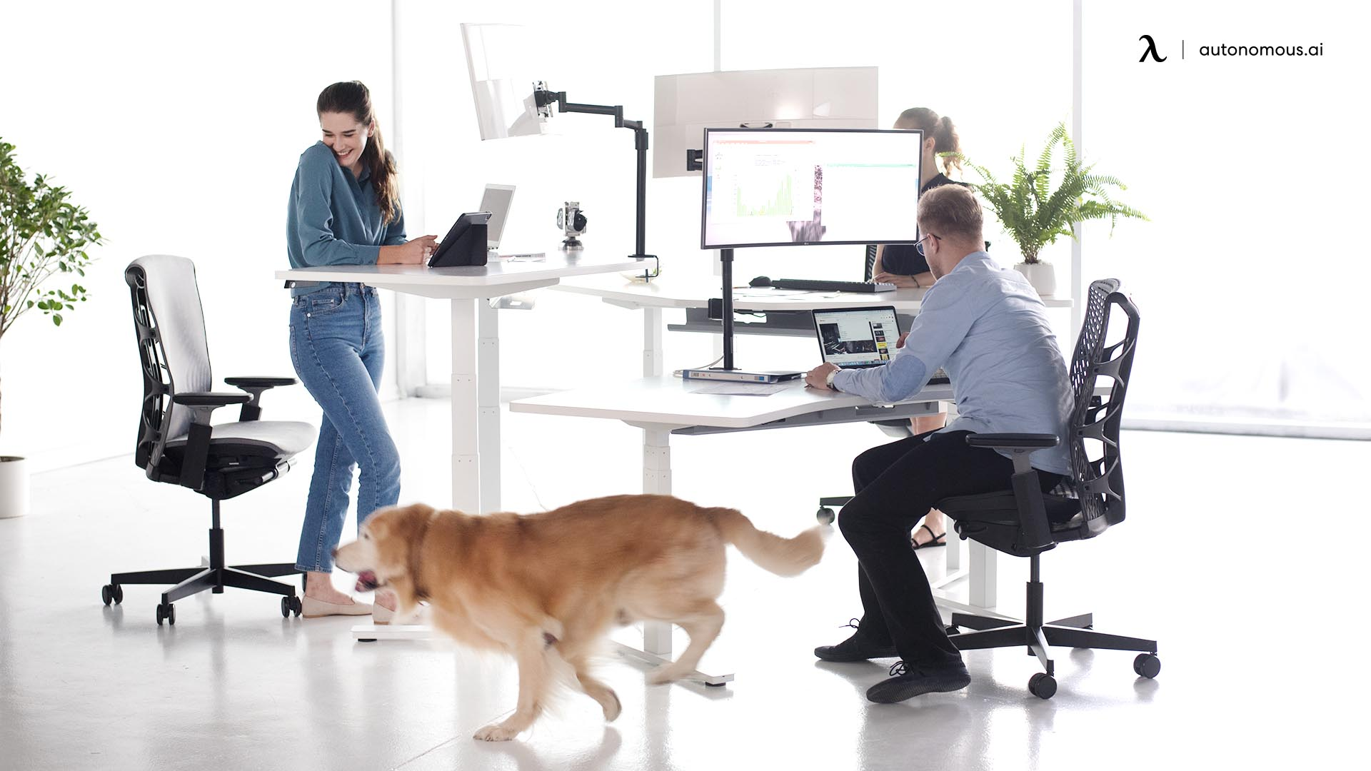 disruption in office