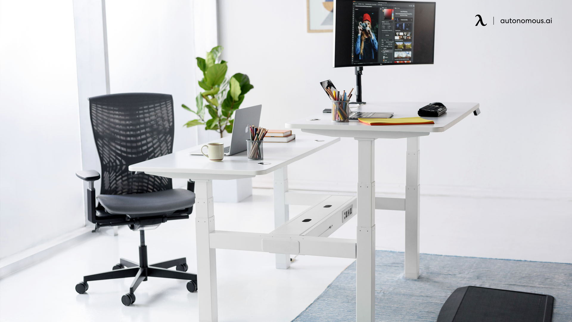 Why Do You Need an Ergonomic Chair