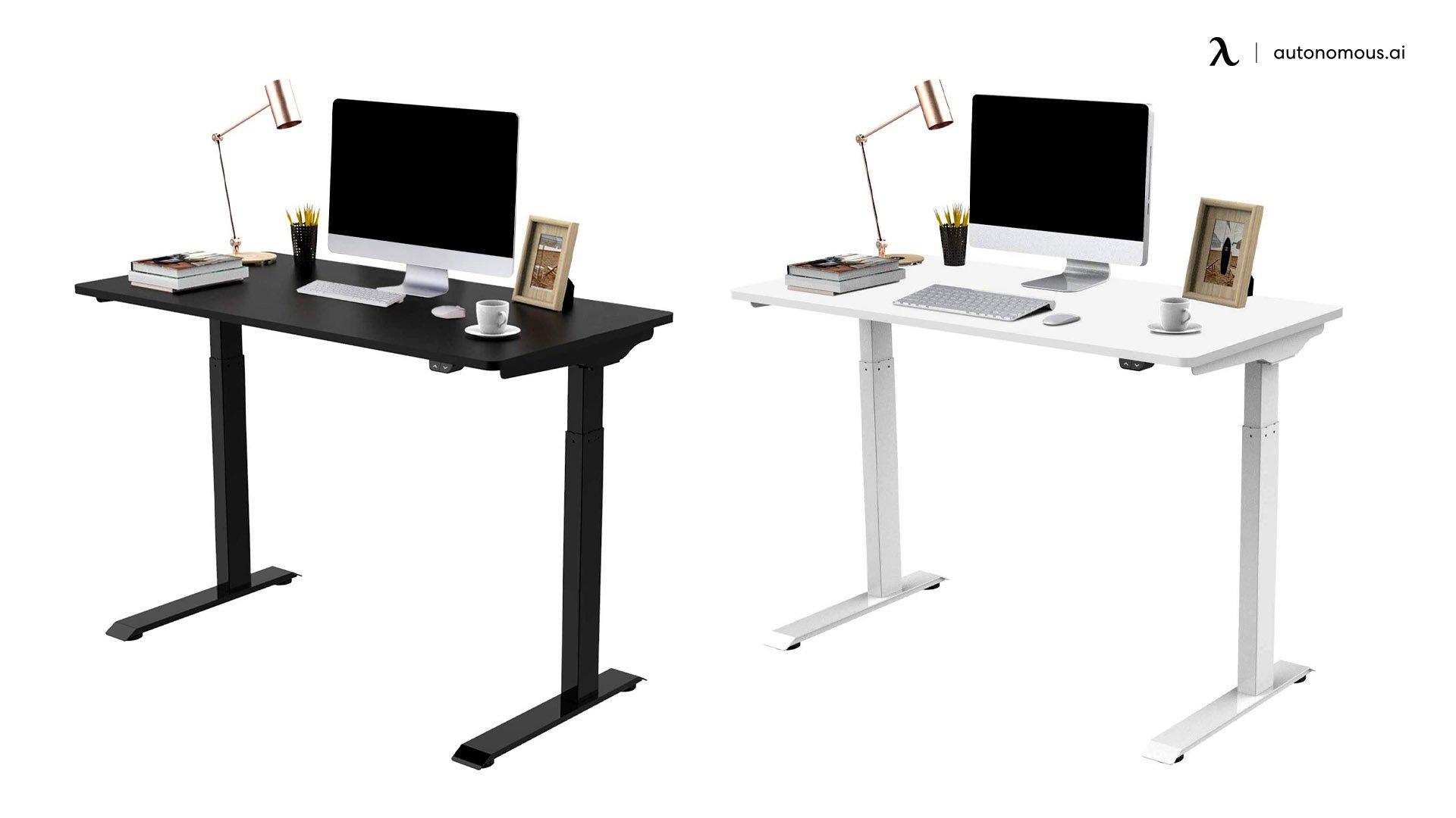 Flexispot EC9 Standing Desk