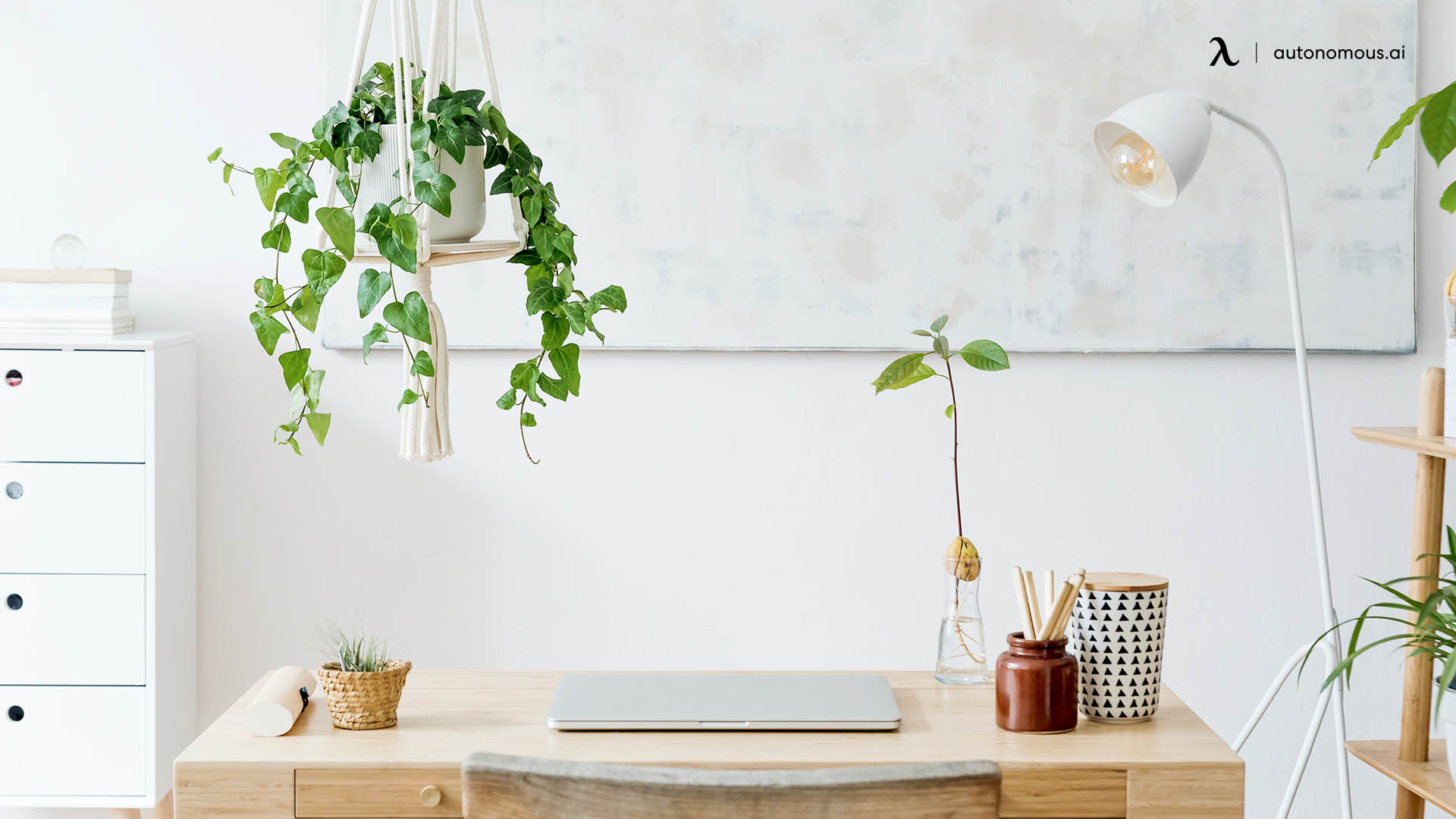 Natural and Plant-Themed White Minimalist Setup