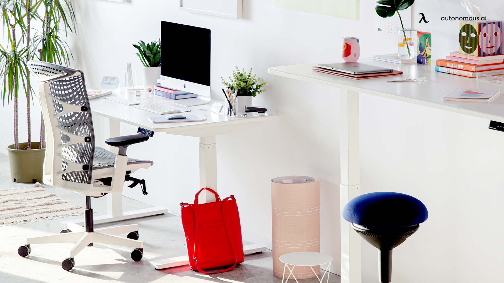Office Standing Desk