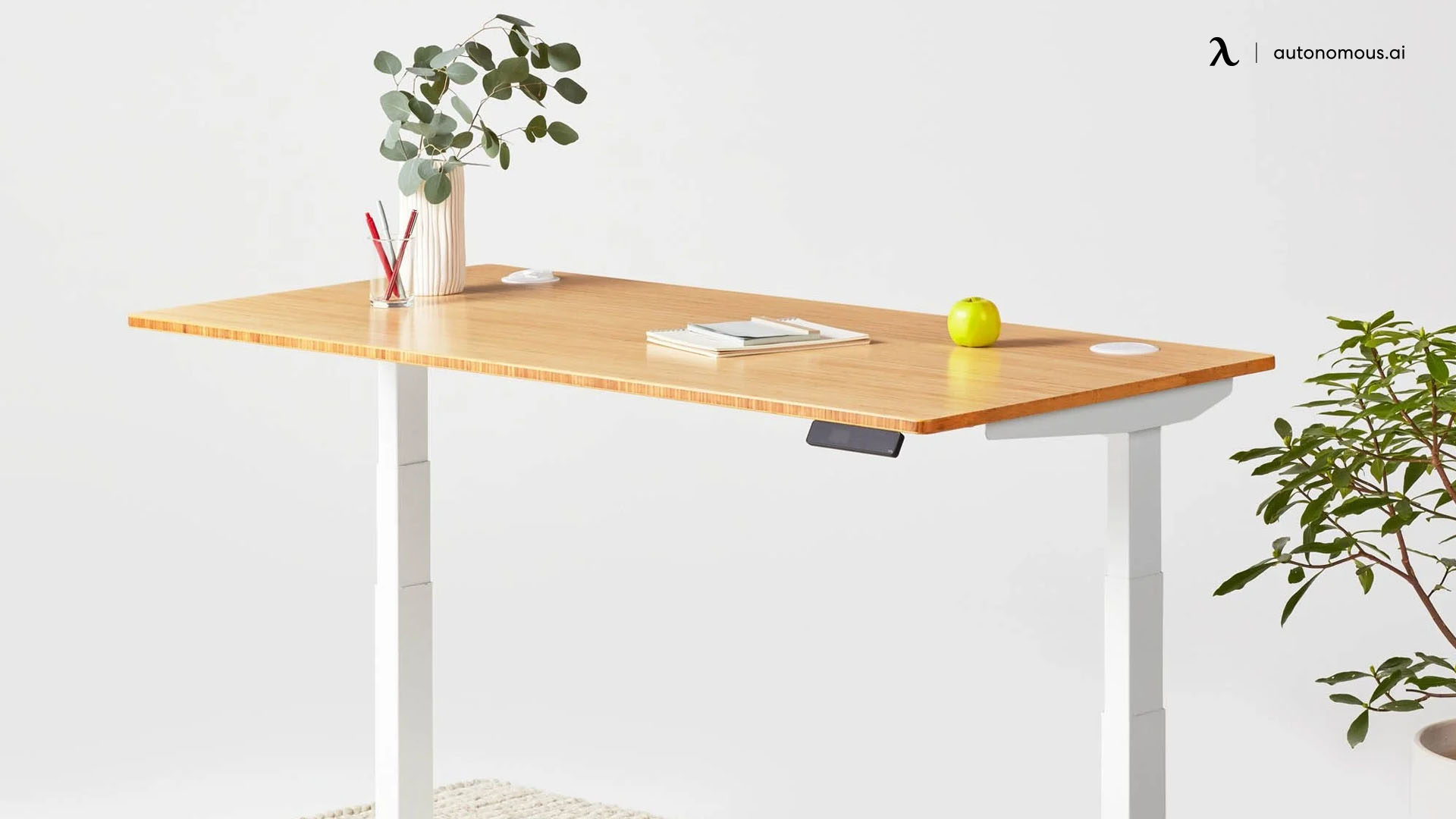 The Jarvis Standing Desk Bamboo Top