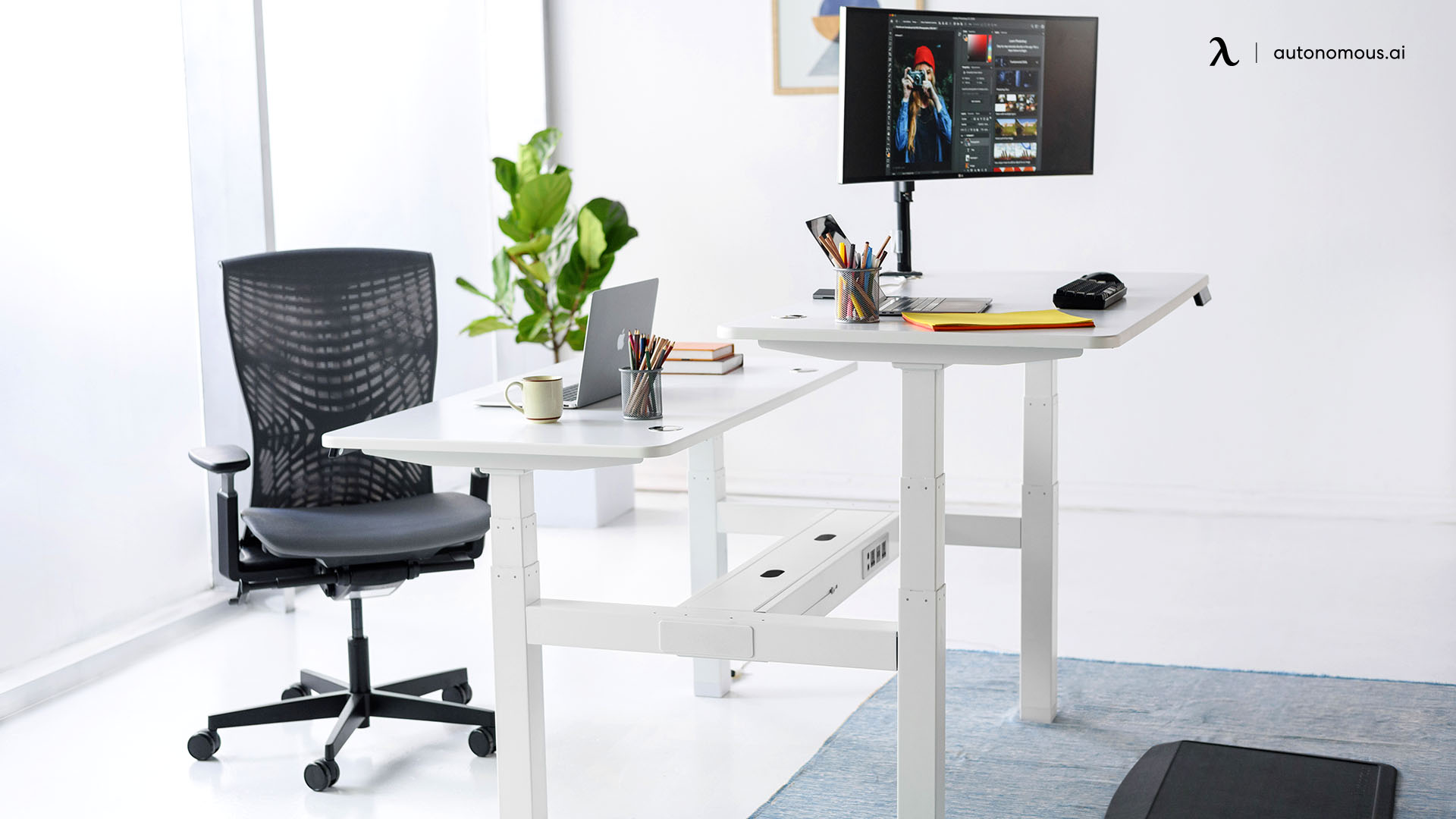 What to Consider in Choosing Adjustable Standing Desk Wood