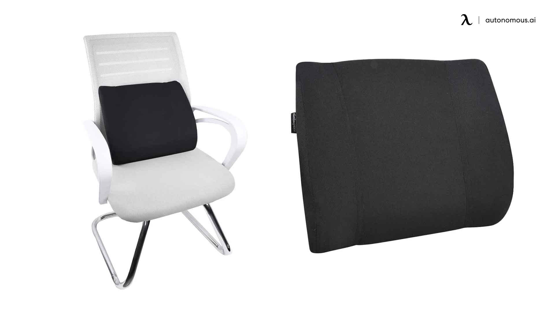 AmazonBasics Memory Foam Lumbar Back Support Pillow