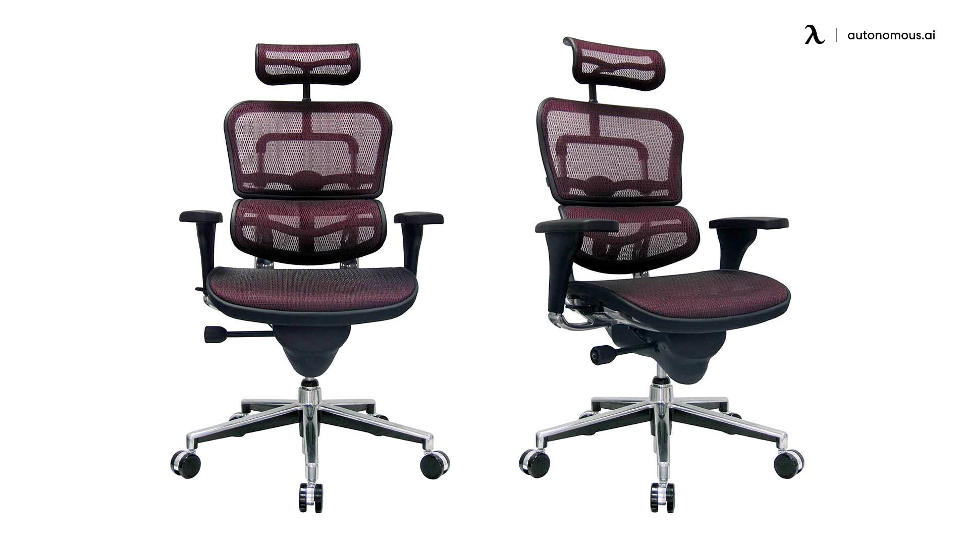 Ergohuman Swivel Chair