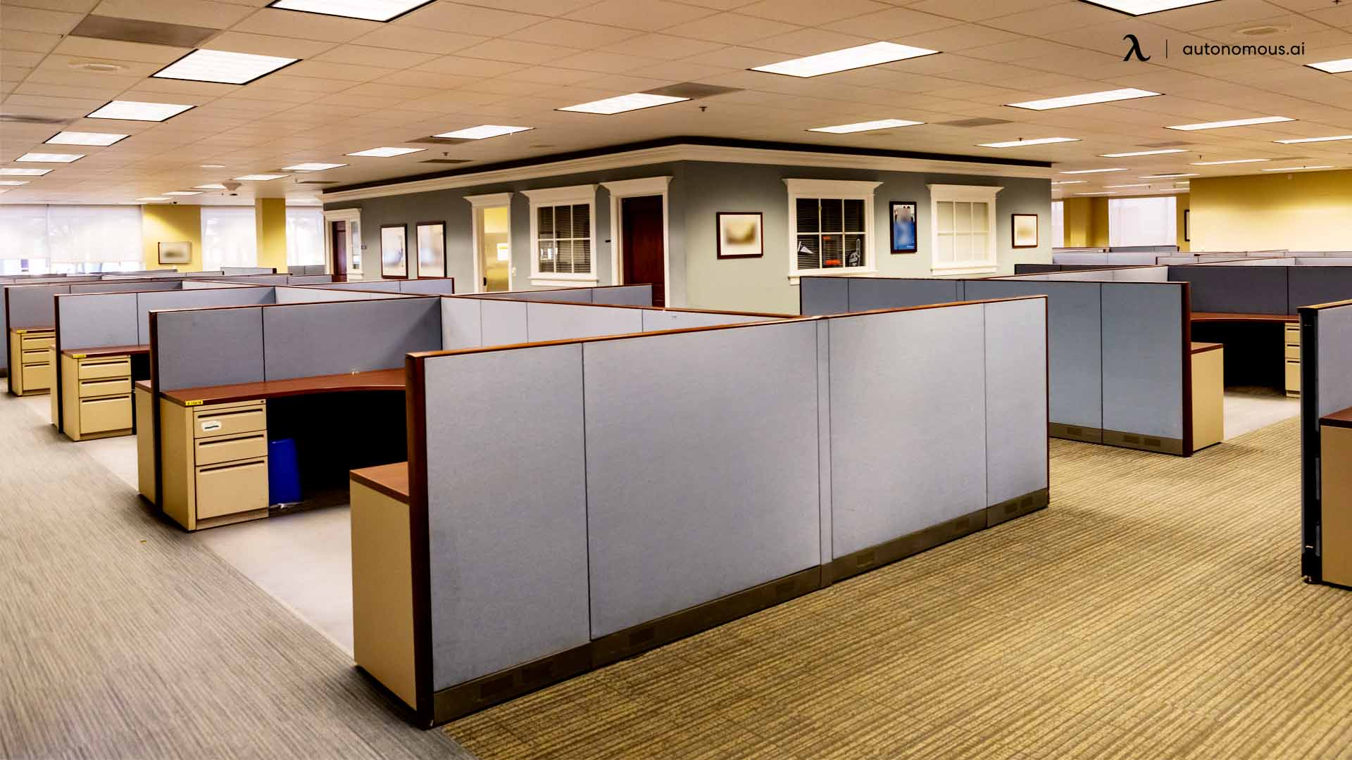 partitions and cubicles in your workplace
