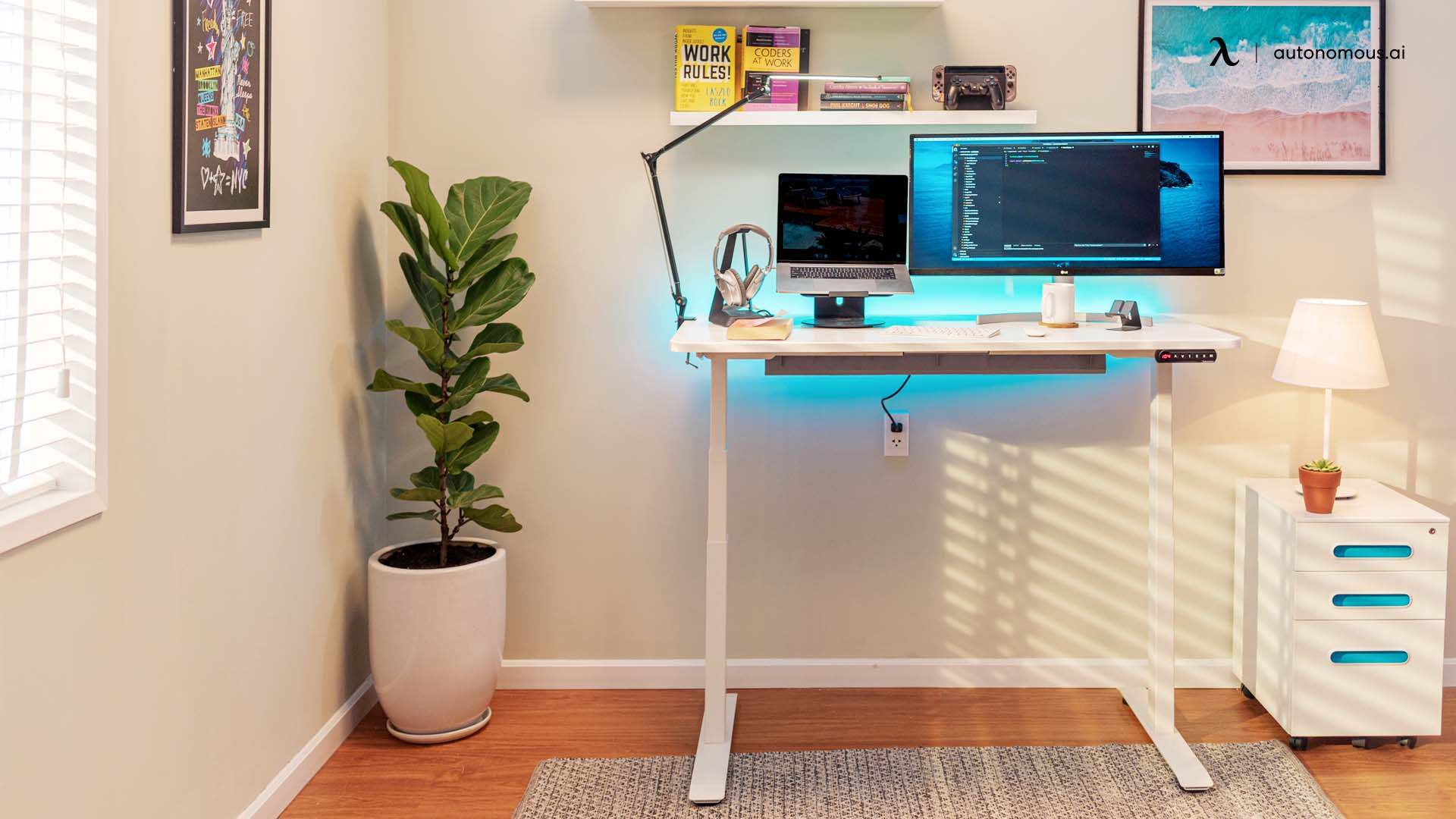 invest in an electric standing desk