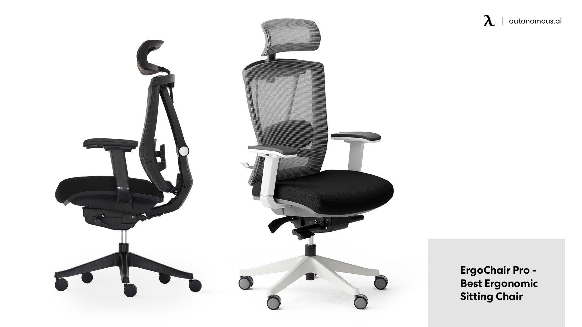 ErgoChair Pro - best office chair for neck pain