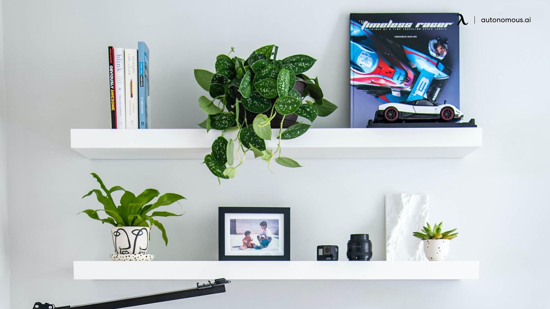Multi-Purpose Shelves