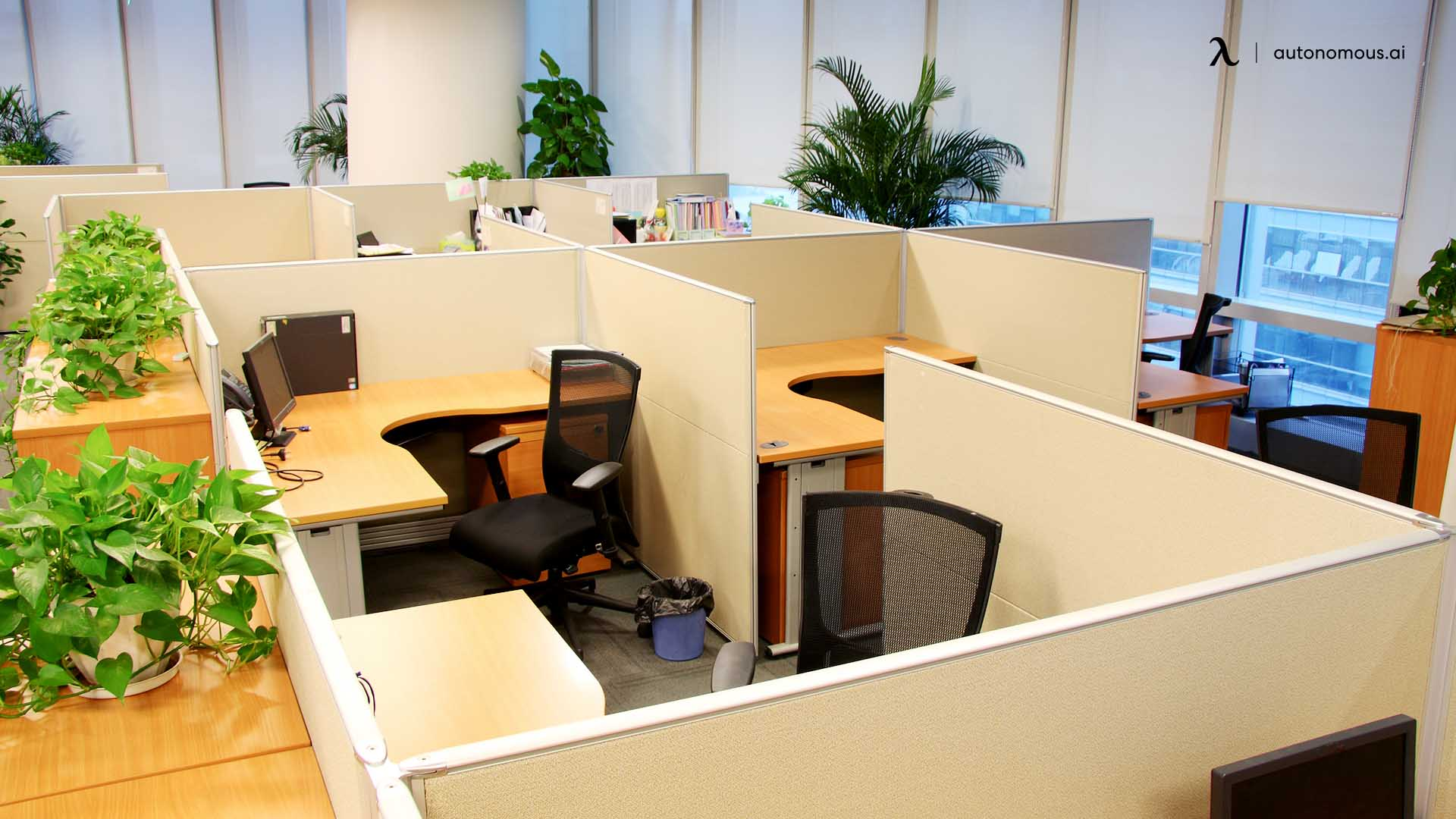 Redefined cubicle for employees