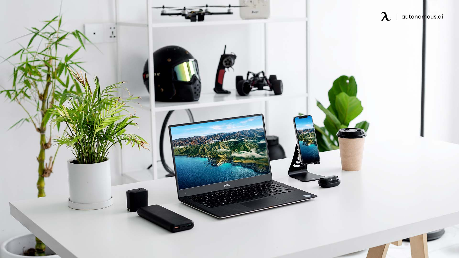 Plant-themed minimalist setup