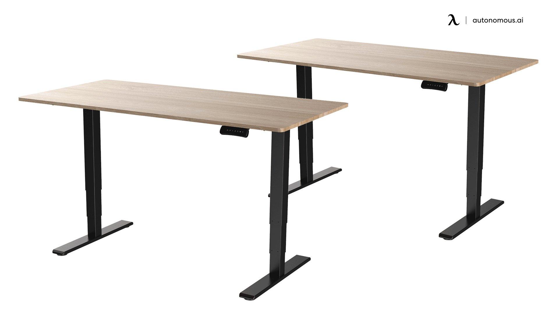 Flexispot EC5 Metal Standing Desk