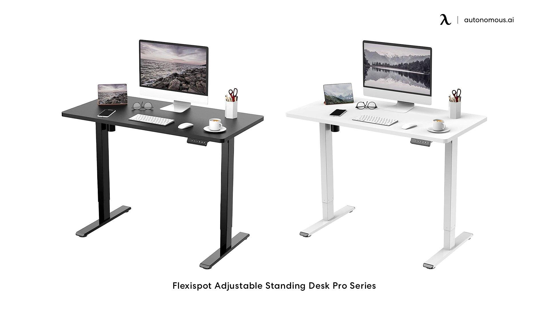 Flexispot Adjustable Standing Desk Pro Series