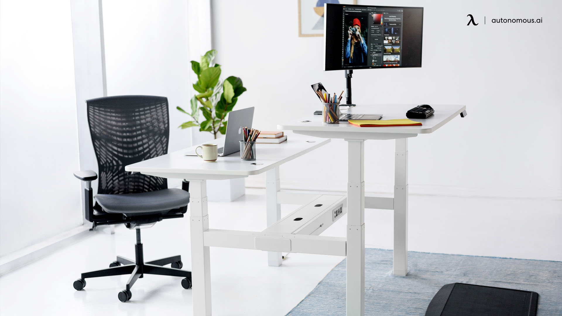 Ergonomic Accessories in ergonomic trend