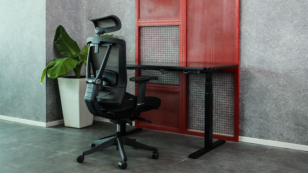 3 Best Office Chairs For Lower Back Pain Autonomous